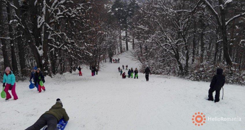 Cazare Green Park