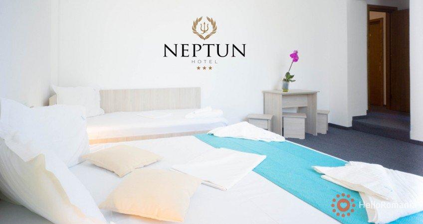 Vedere de ansamblu Neptun