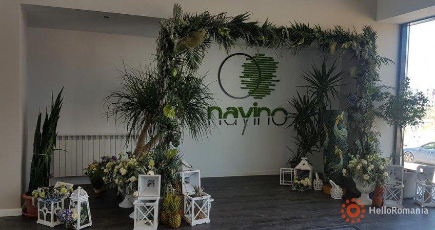 Cazare Hotel Resort Nayino Mamaia Nord