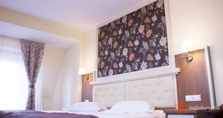 Galerie Hotel Leul De Aur Sebes