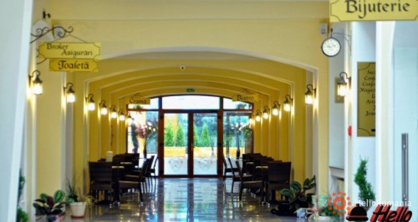 Cazare Hotel Leul De Aur Sebes