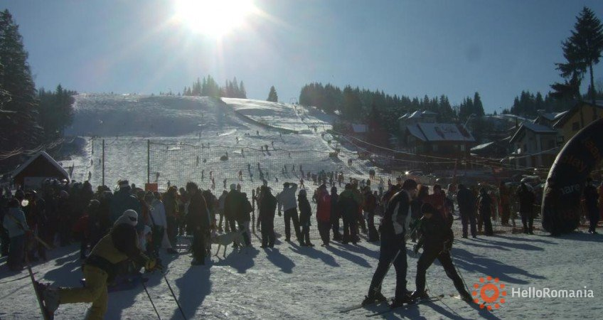 Imagine Pensiunea Alpine Lounge